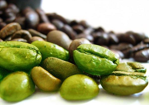 chicco-di-caffè-verde gustoenutrizione